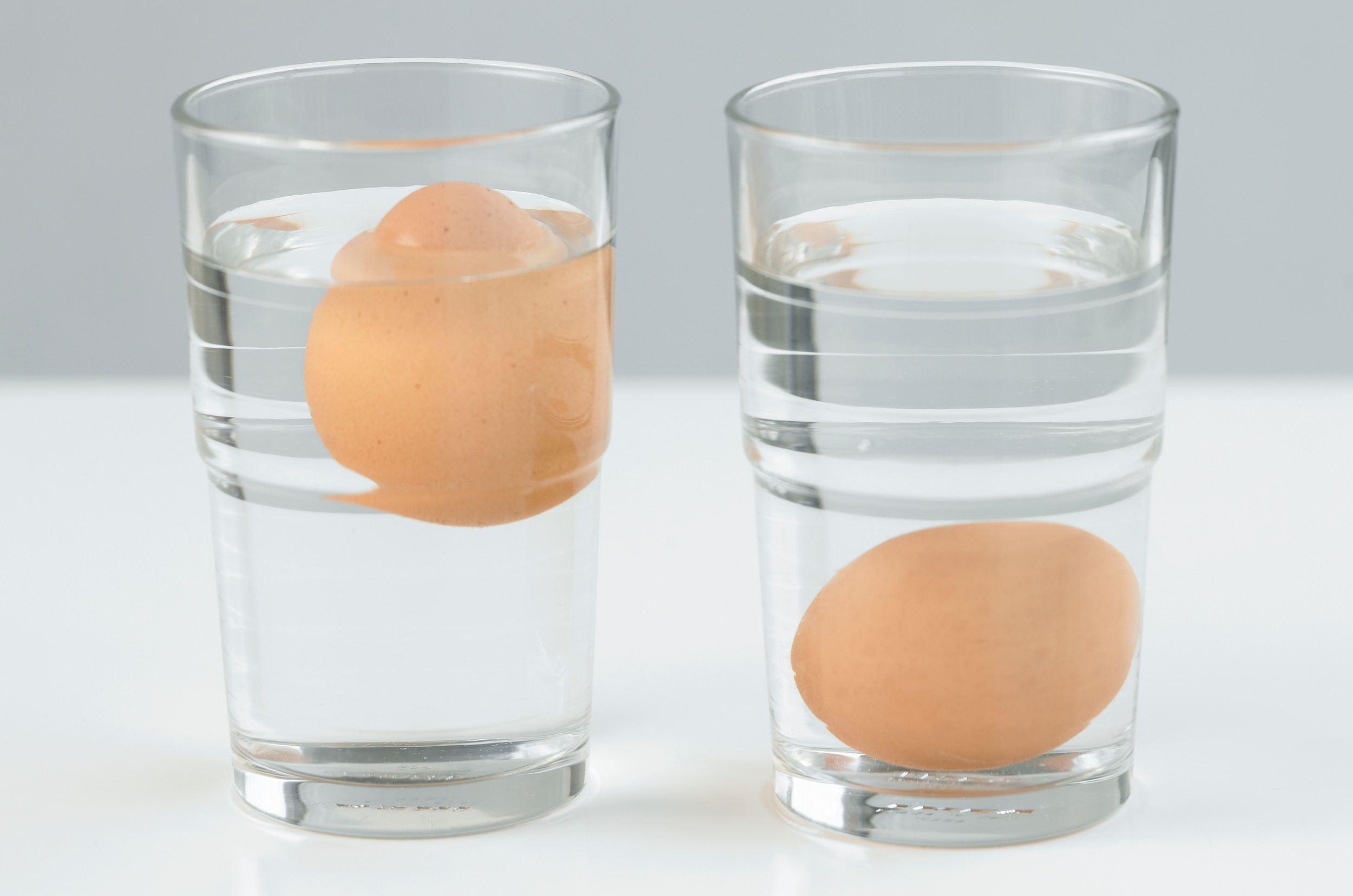 Testing eggs for freshness