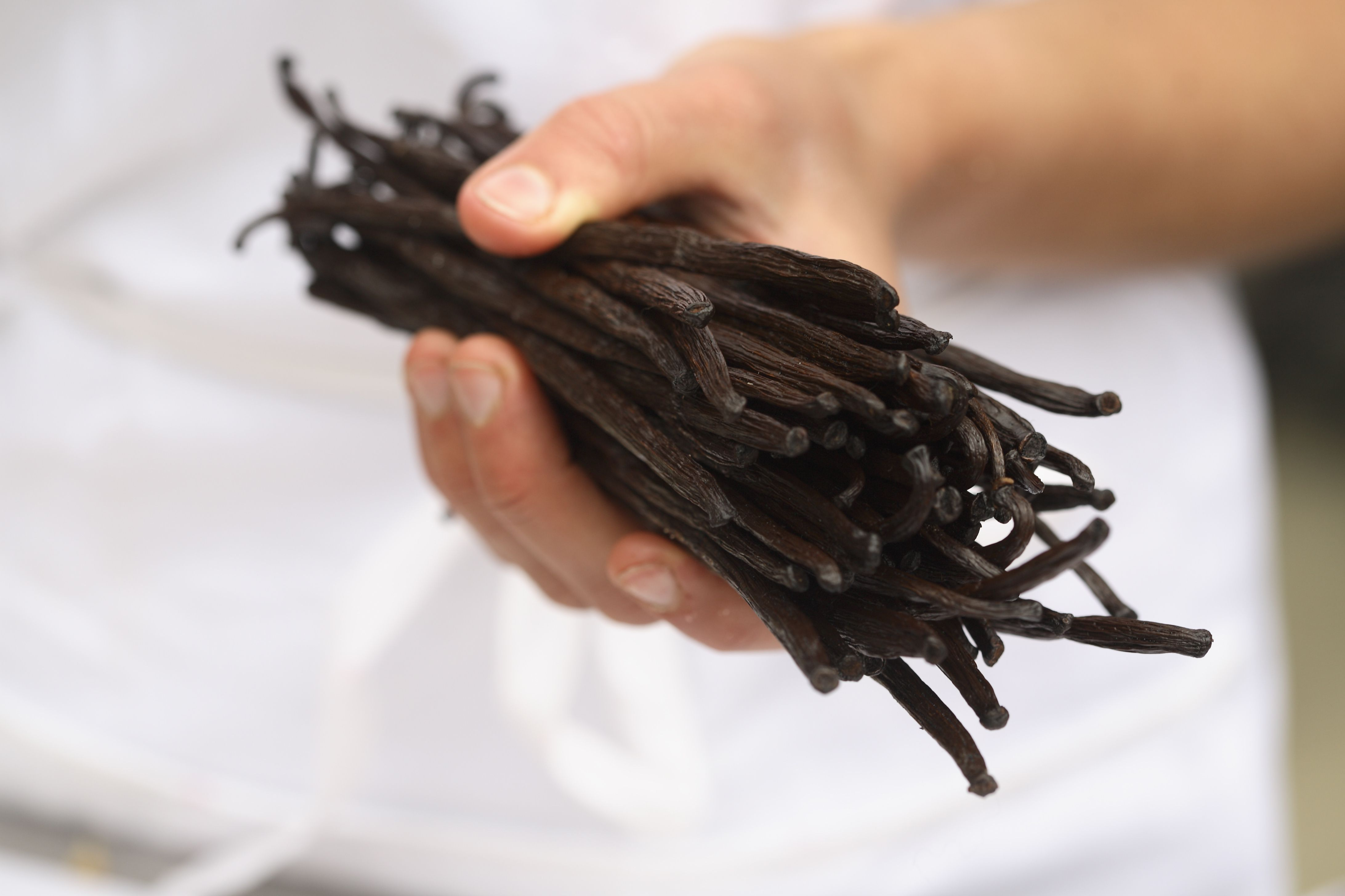 how to make vanilla extract from beans