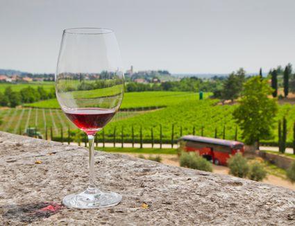 A view over the Ugolini vineyard in the Valpolicella wine region