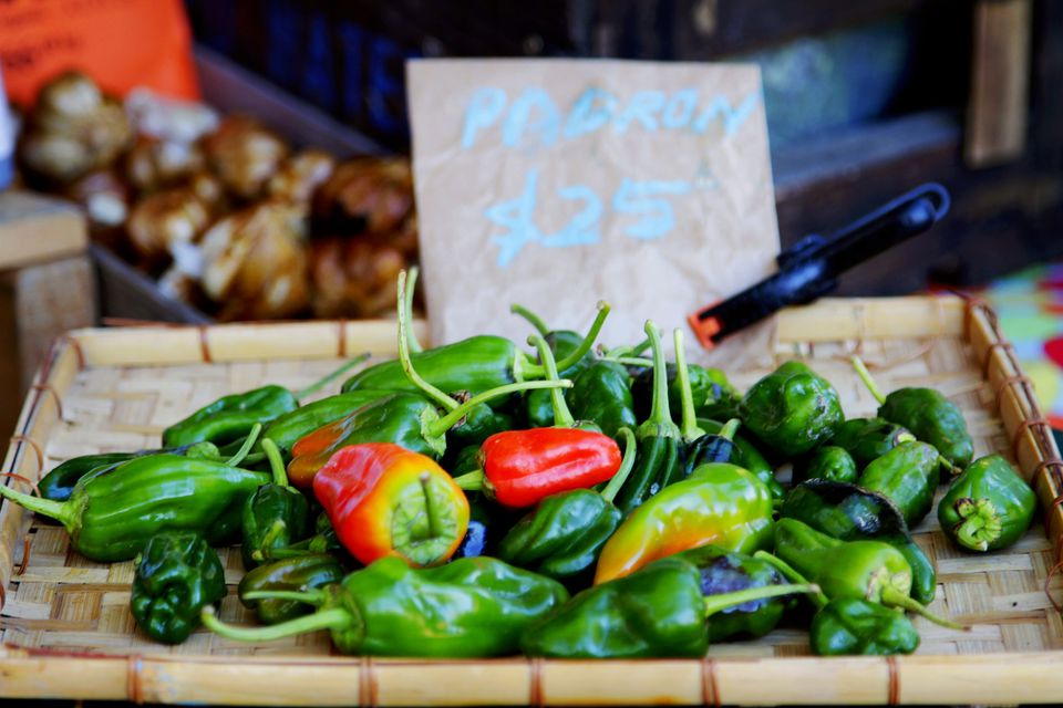 A Slow Food Farmer's Market stall selling padrón peppers