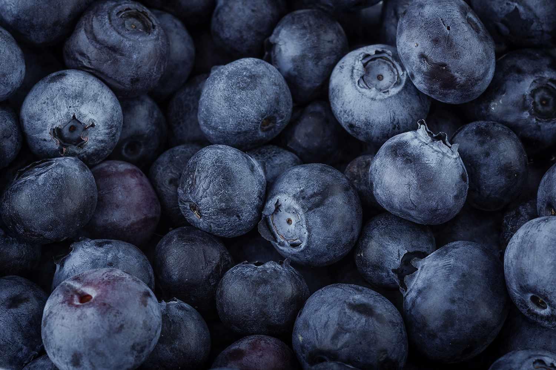Blueberry macro