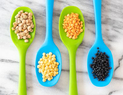 Green, yellow, red, and black lentils