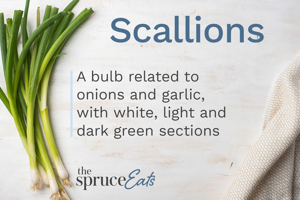 what are scallions