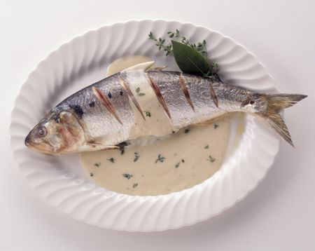 Cooking American or White Shad