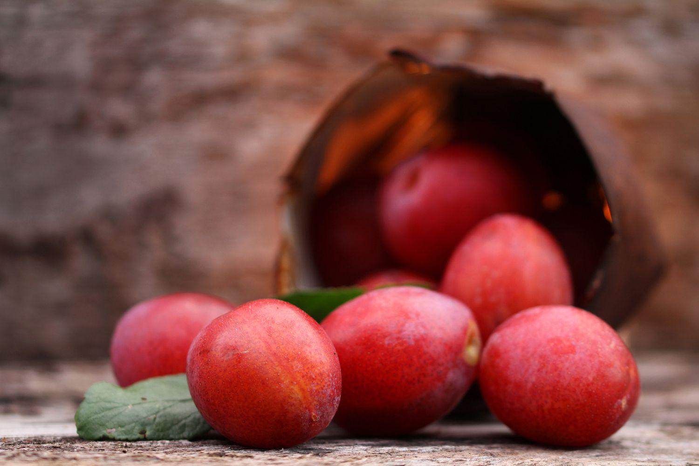 Kalamata Red Olives