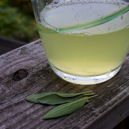An image of sage tea in a pitcher and fresh sage leaves