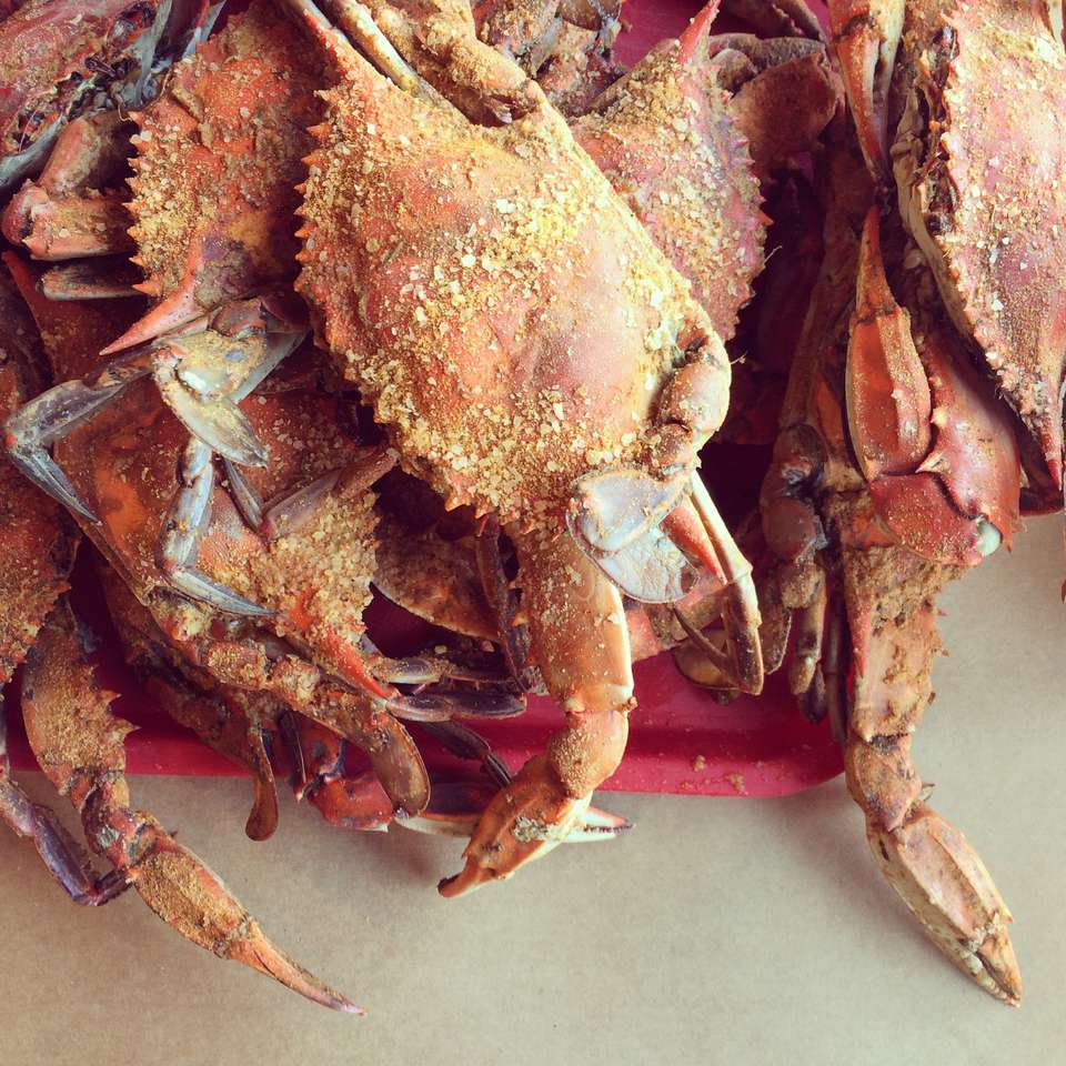 Maryland crab Chesapeake seasoning