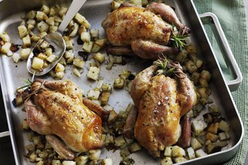 Roasted cornish hens in a pan