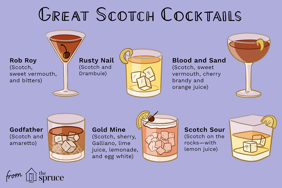 illustration of scotch cocktails