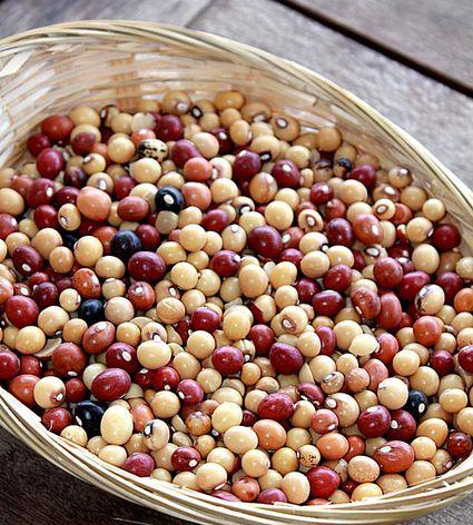Bambara or Jugo beans
