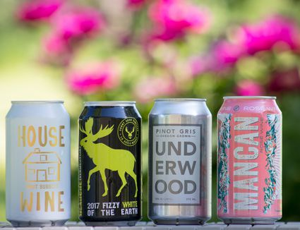 The 8 Best Canned Wines of 2020