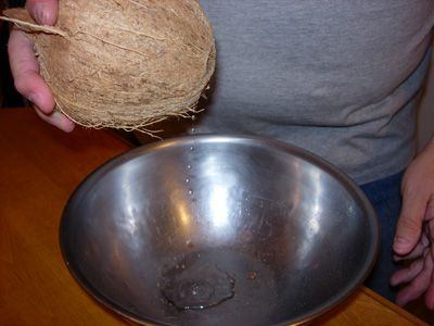 Draining the clear liquid from a coconut
