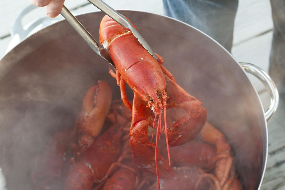 Boiled lobster in pot
