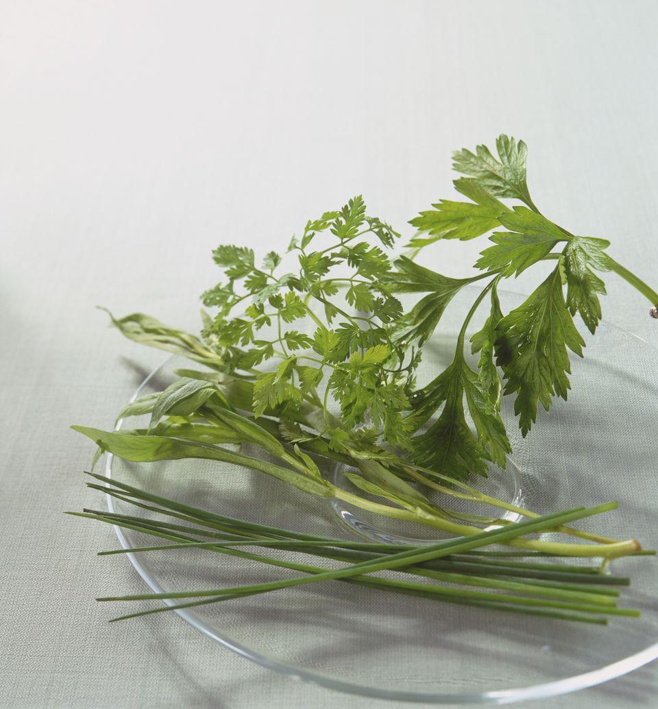 Anthriscus cerefolium, allium schoenoprasum, petroselinum crispum, artemisia dracunculus, fresh Chervil, Chives, Parsley and Tarragon leaves.