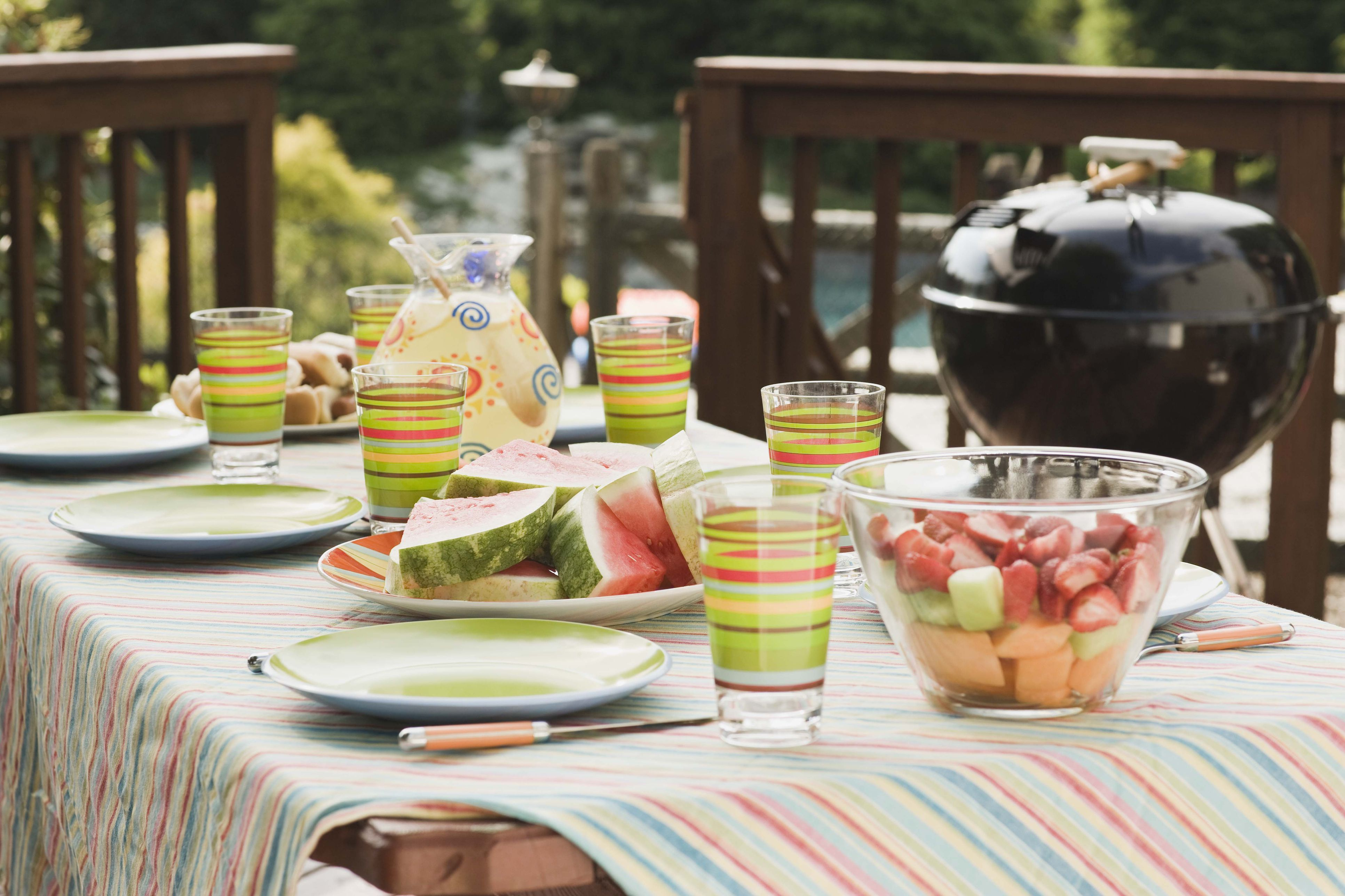 Table setting for picnic