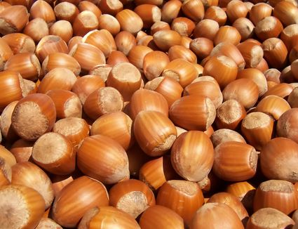 A pile of filberts
