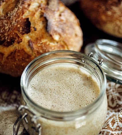 best-containers-sourdough-starter