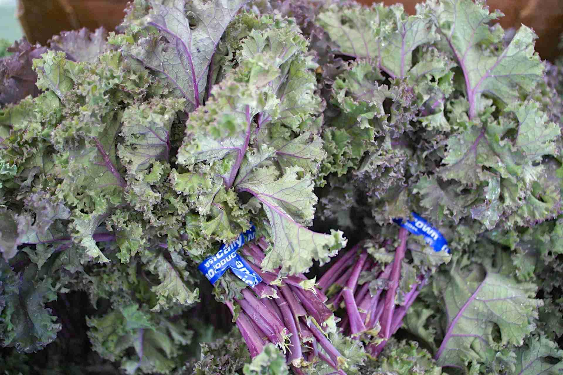 Russian Kale