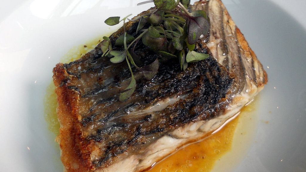 Top 10 Sustainable Fish Choices