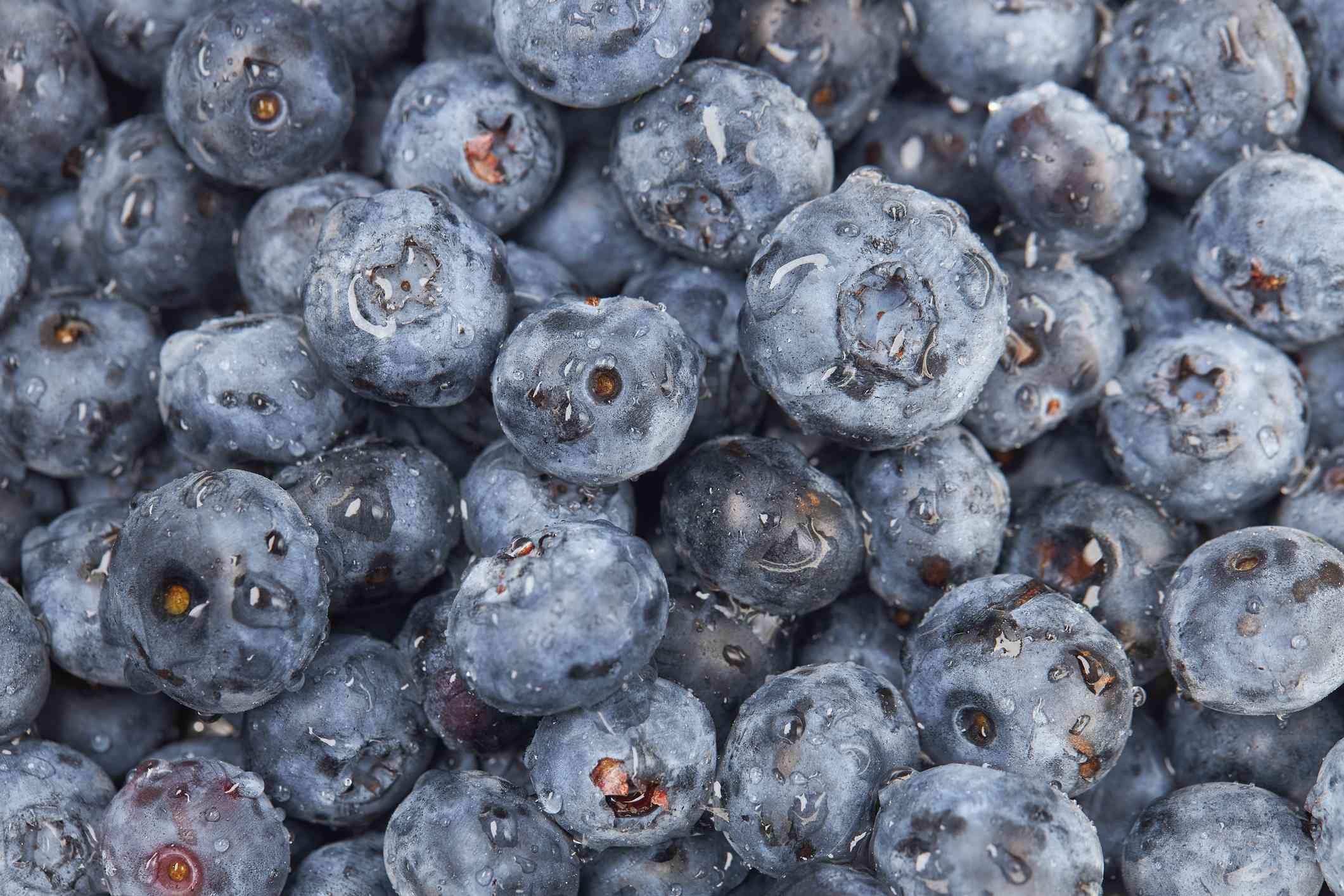 Alaska Fruits and Vegetables Seasonal Produce