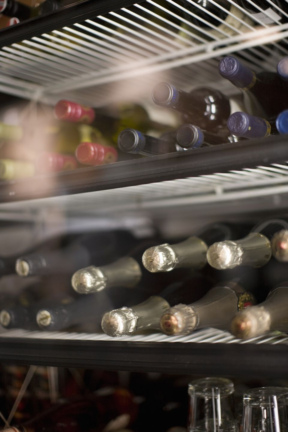 Wine and champagne in refrigerator