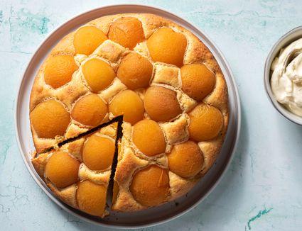 Aprikosenkuchen: German Apricot Cake