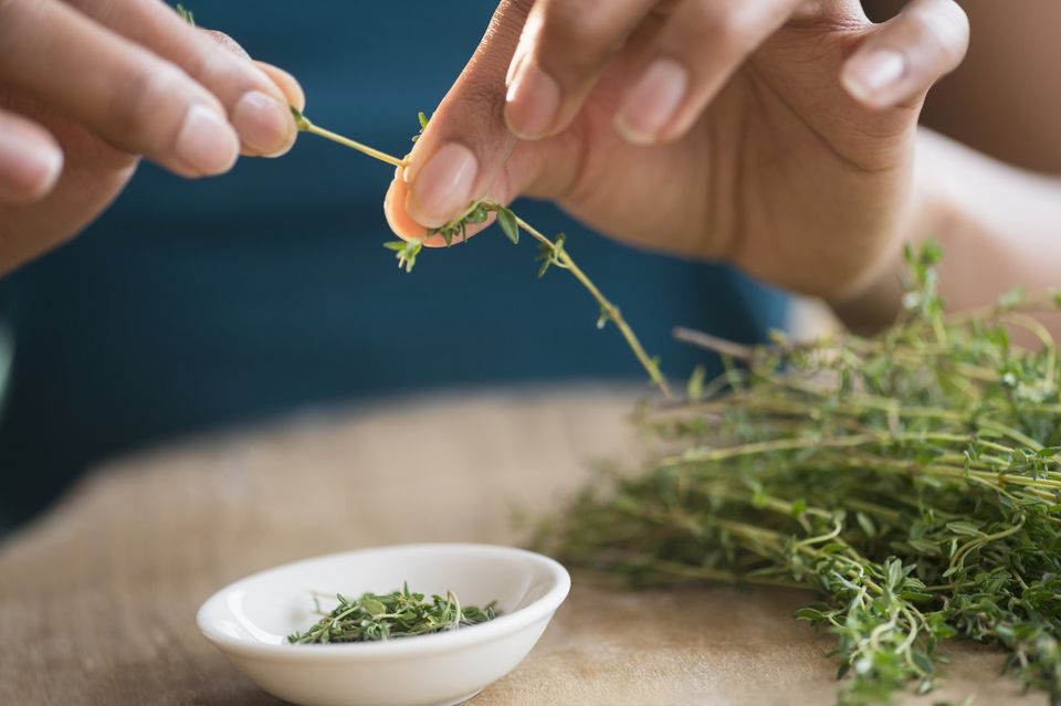 woman trimming thyme