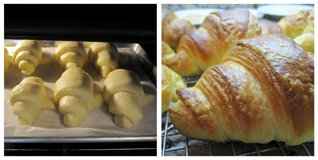Brush the Croissants With Egg Wash and Bake Until Golden