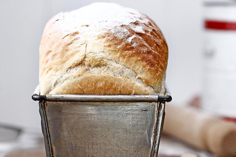 Amish bread rising
