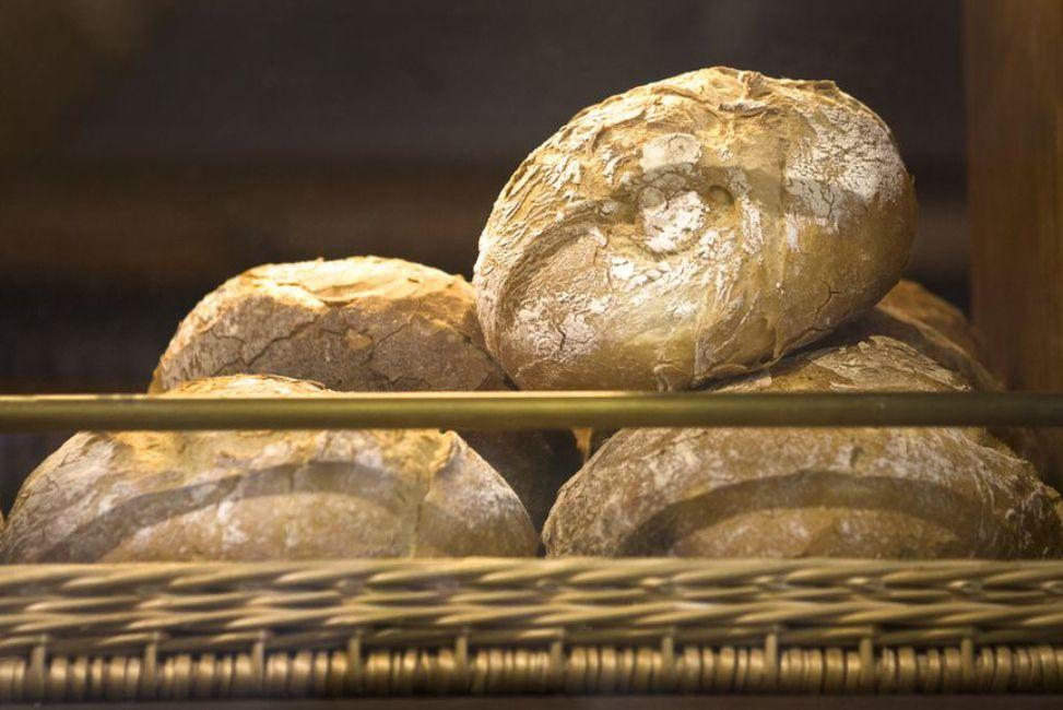 Rustic Spanish Bread (Pan Rustico)