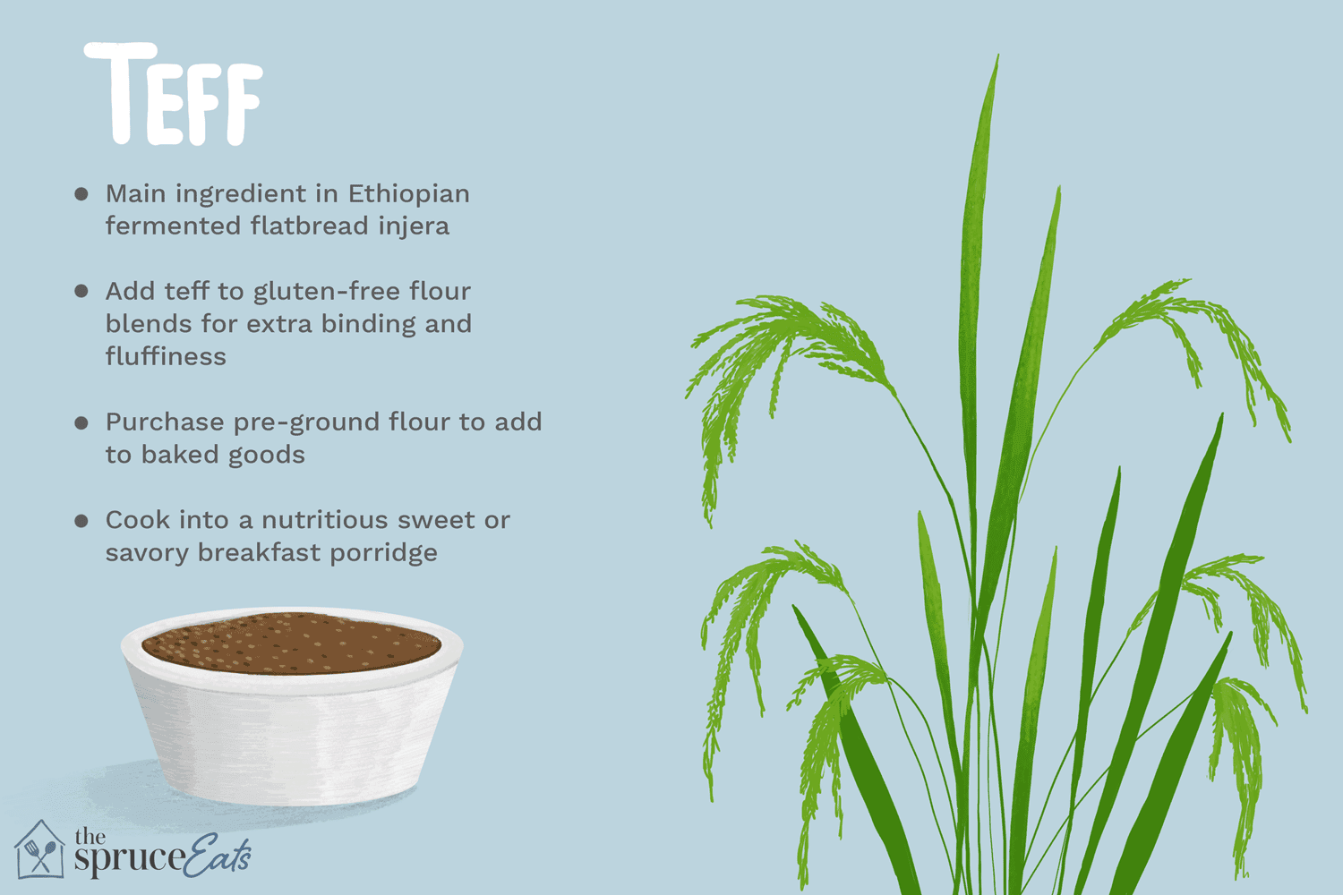 What Is Teff and How Is It Used?