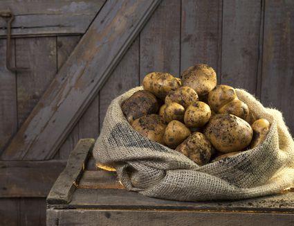 Germany, Potatoes in sack on wood