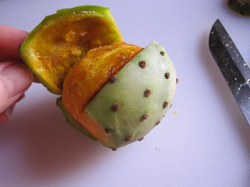 Pry Open the Prickly Pear's Skin