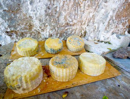 Greek cheeses