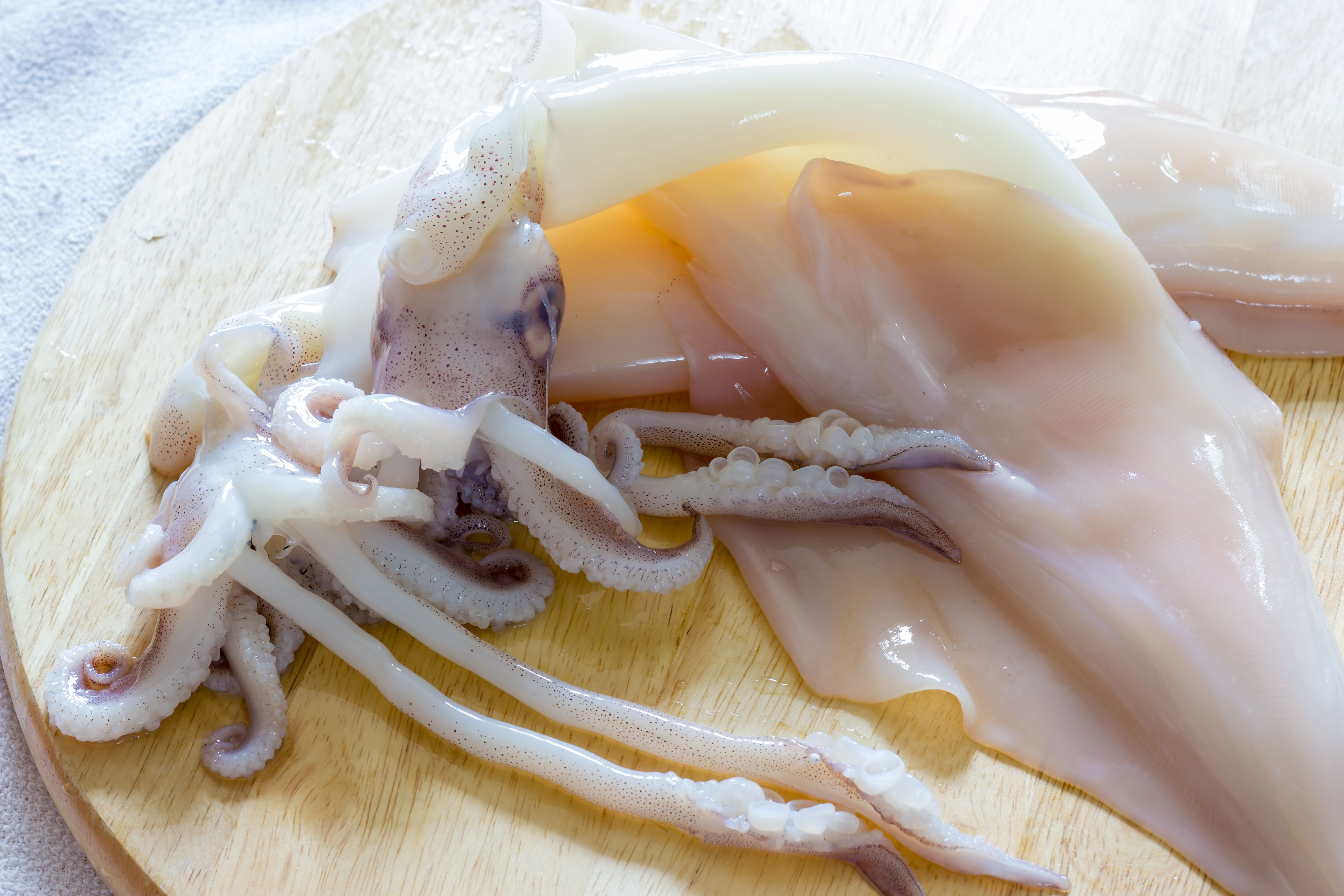 Raw whole squid