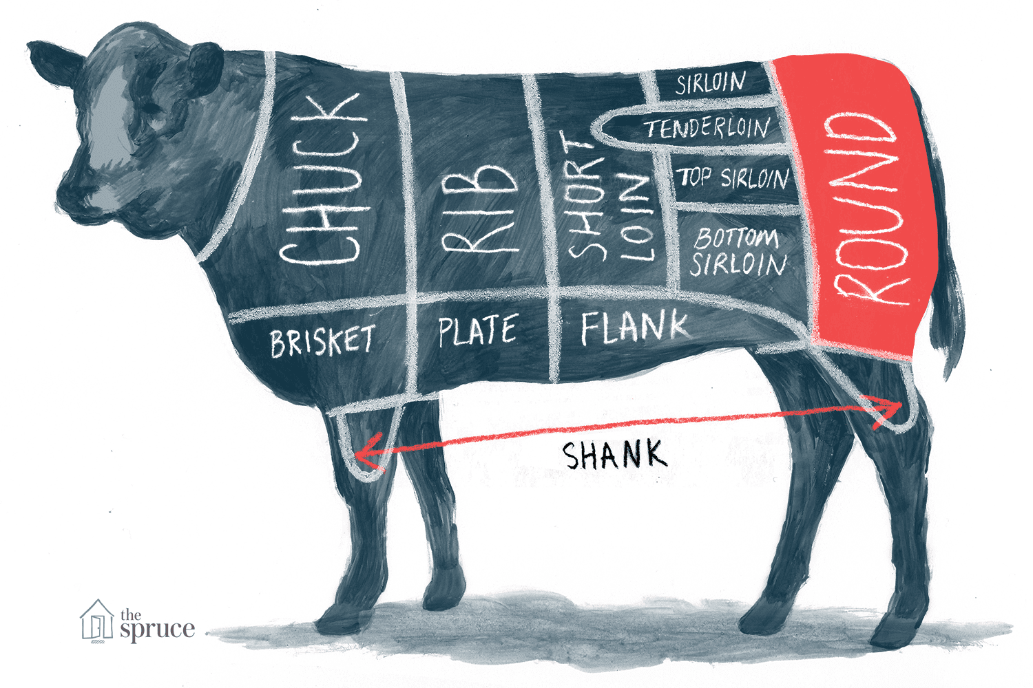 A Guide to All the Cuts of BeefThe Spruce Eats