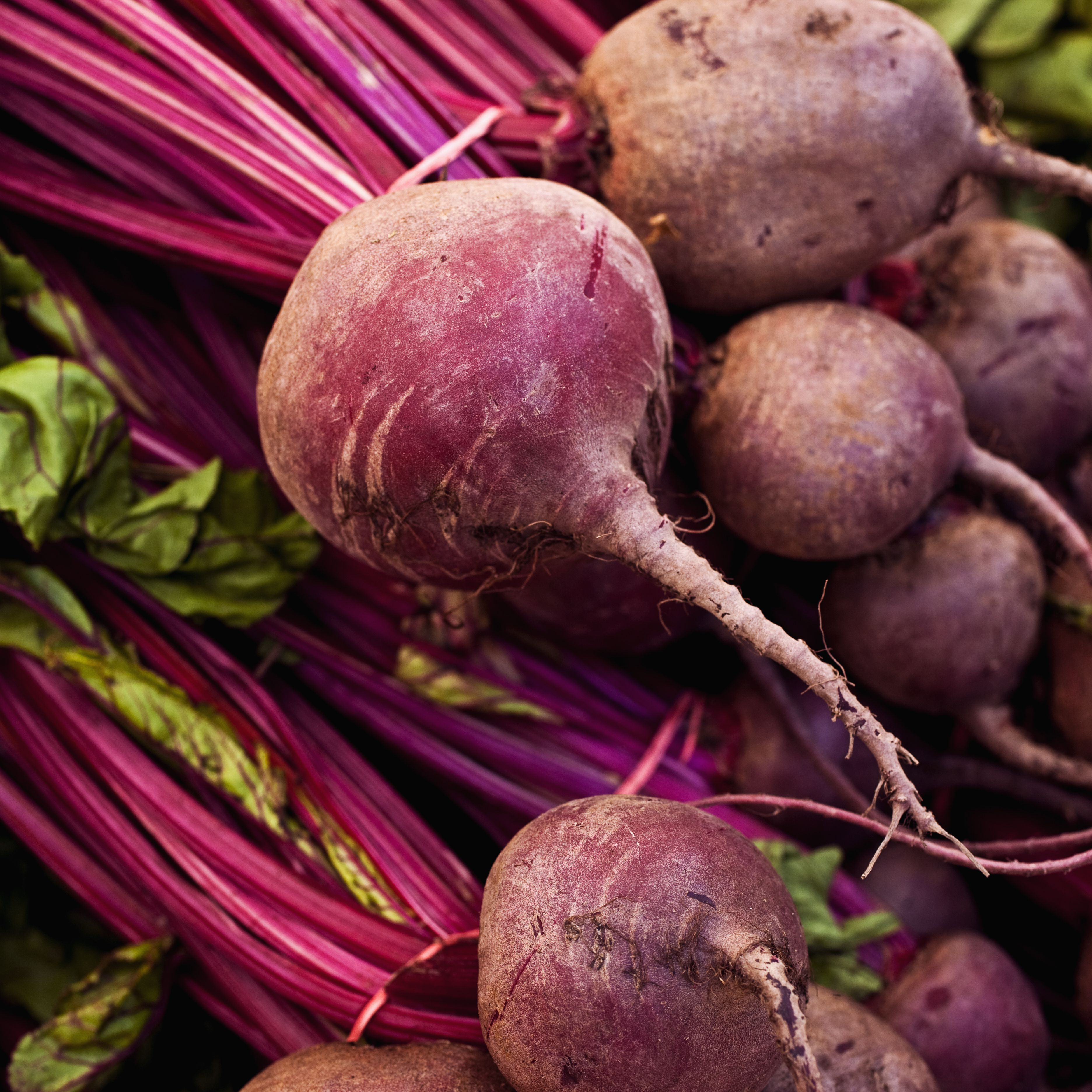 Polish Beets With Sour Cream Recipe