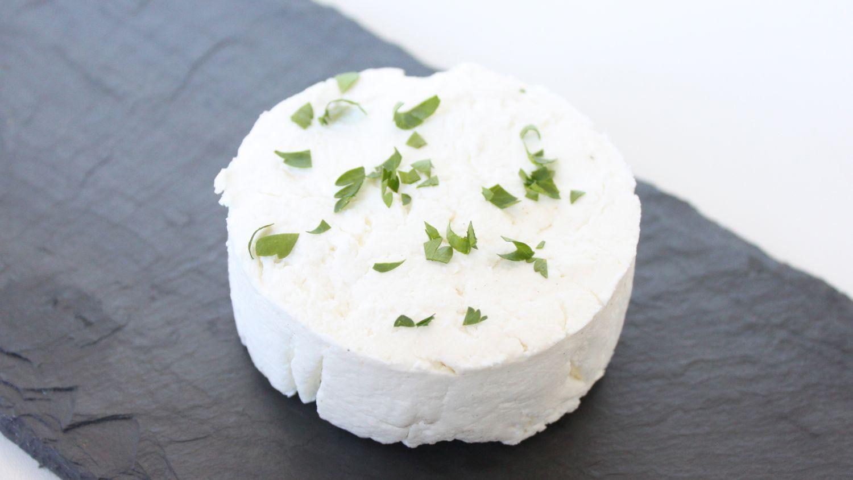 스타터 문화로 직접 만든 염소 치즈 만들기