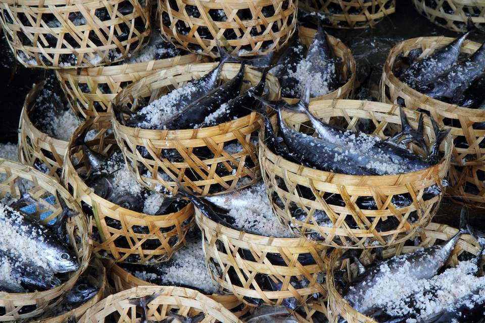 Baskets of Salted Freshly-Caught Fish.