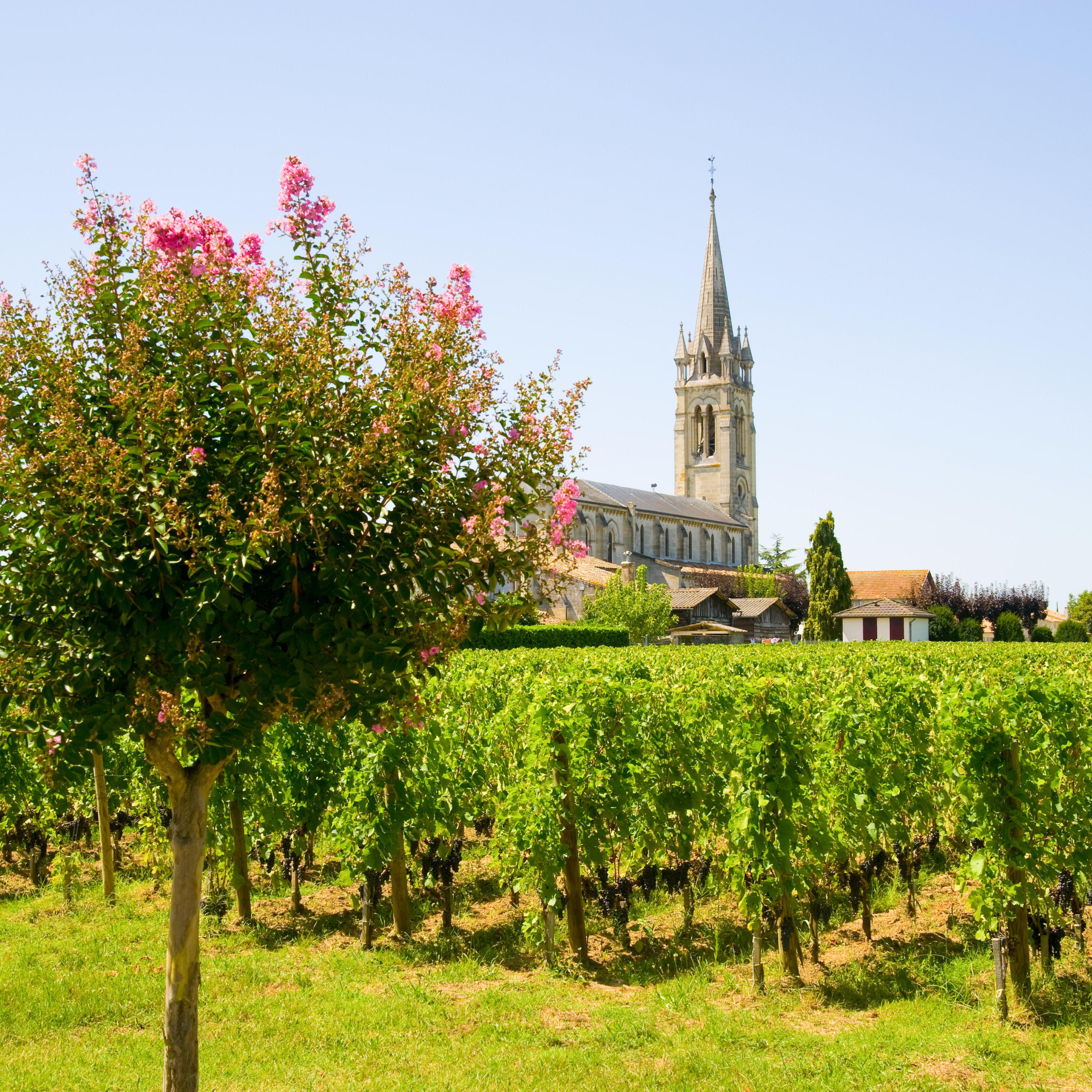 7 Favorite French Wine Growing Regions