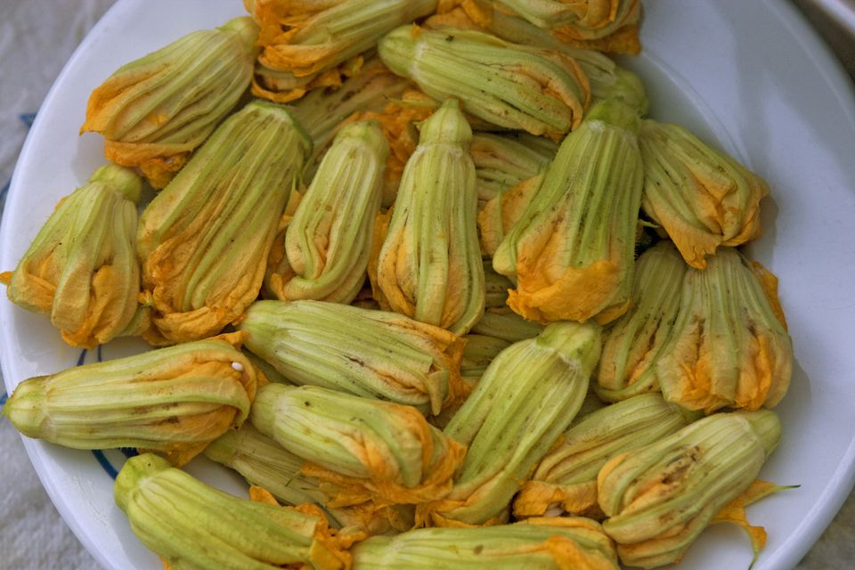 Close up of zucchini flowers in a white bowl