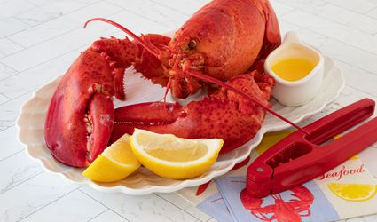 steamed lobster on a tray with drawn butter and lemon