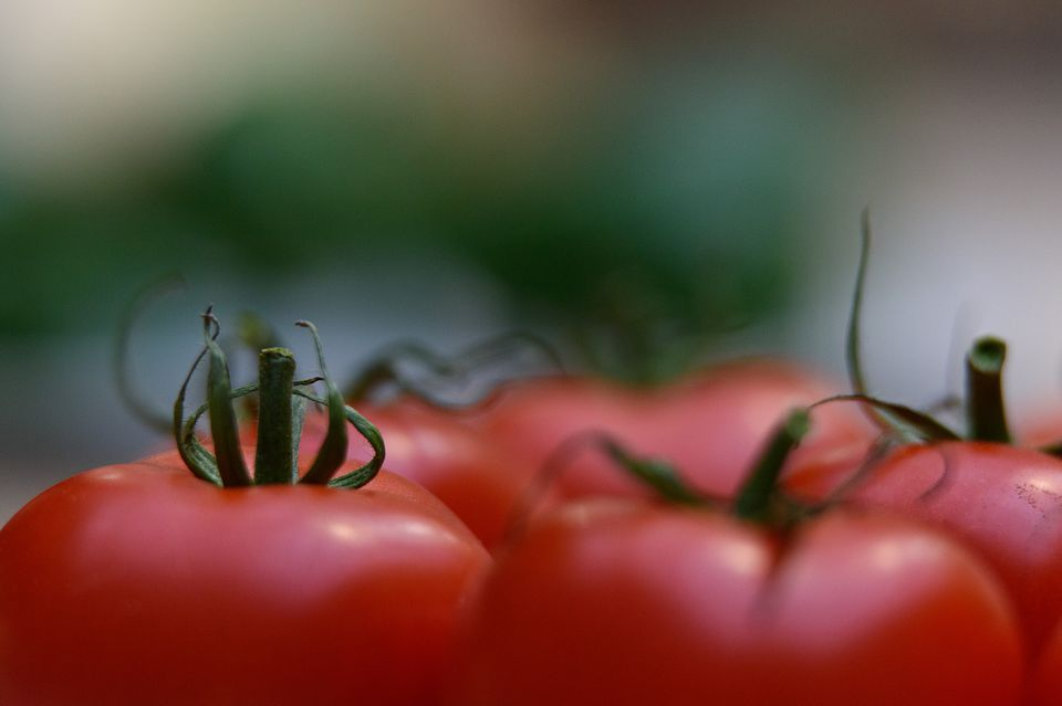Tomatoes in a bunch