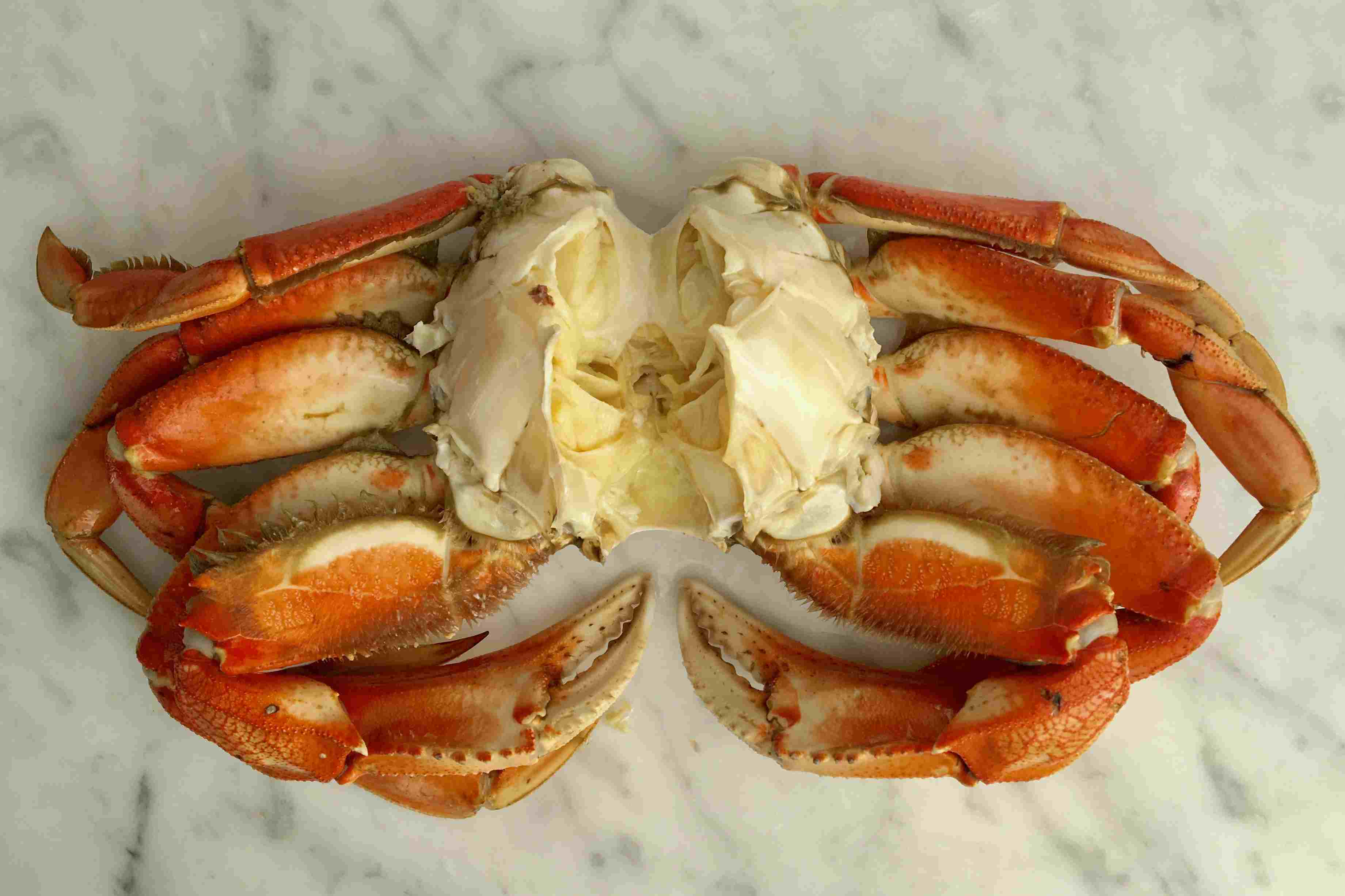 Cleaned Dungeness Crab