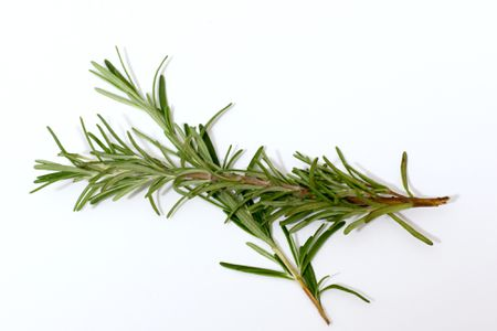 About Rosemary and Its Use in Cooking
