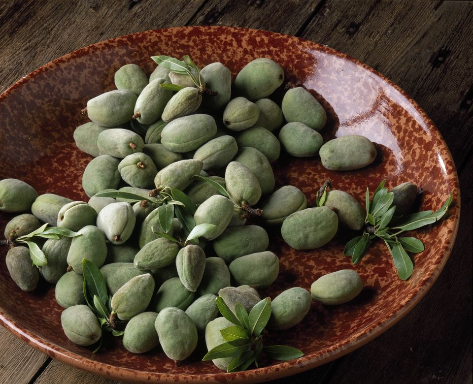 Almonds in a dish on a garden terrasse
