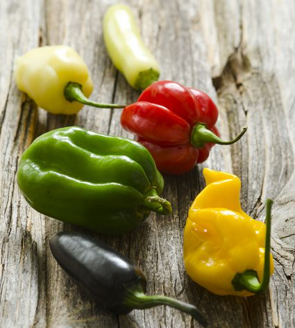 Different hot chili peppers