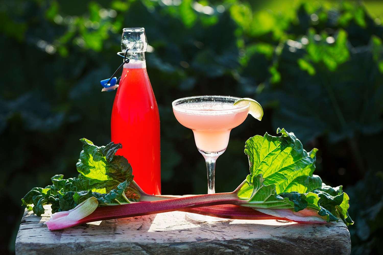 Freshly picked rhubarb and a rhubarb cocktail