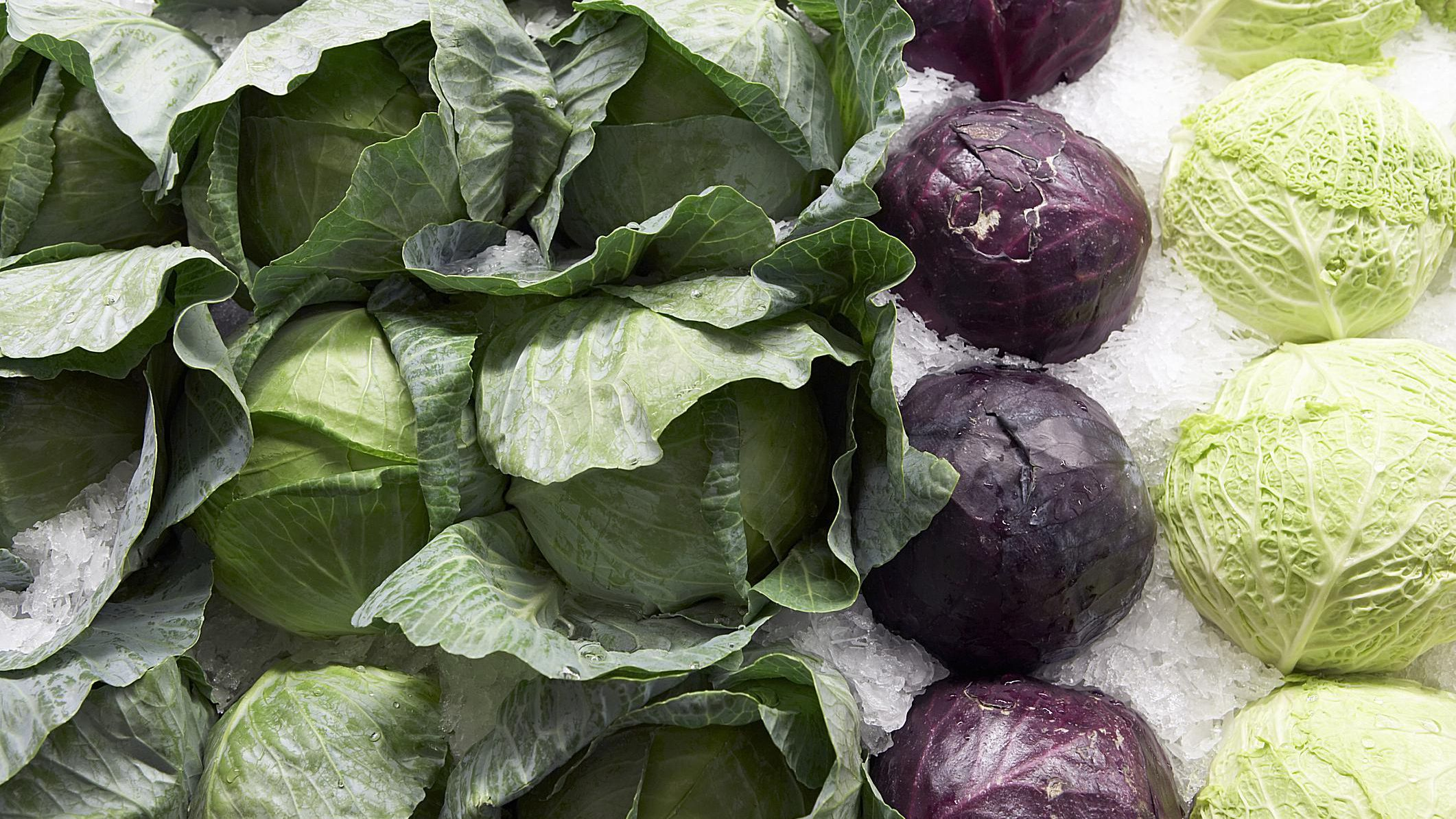 Types Of Cabbages From Green To Savoy