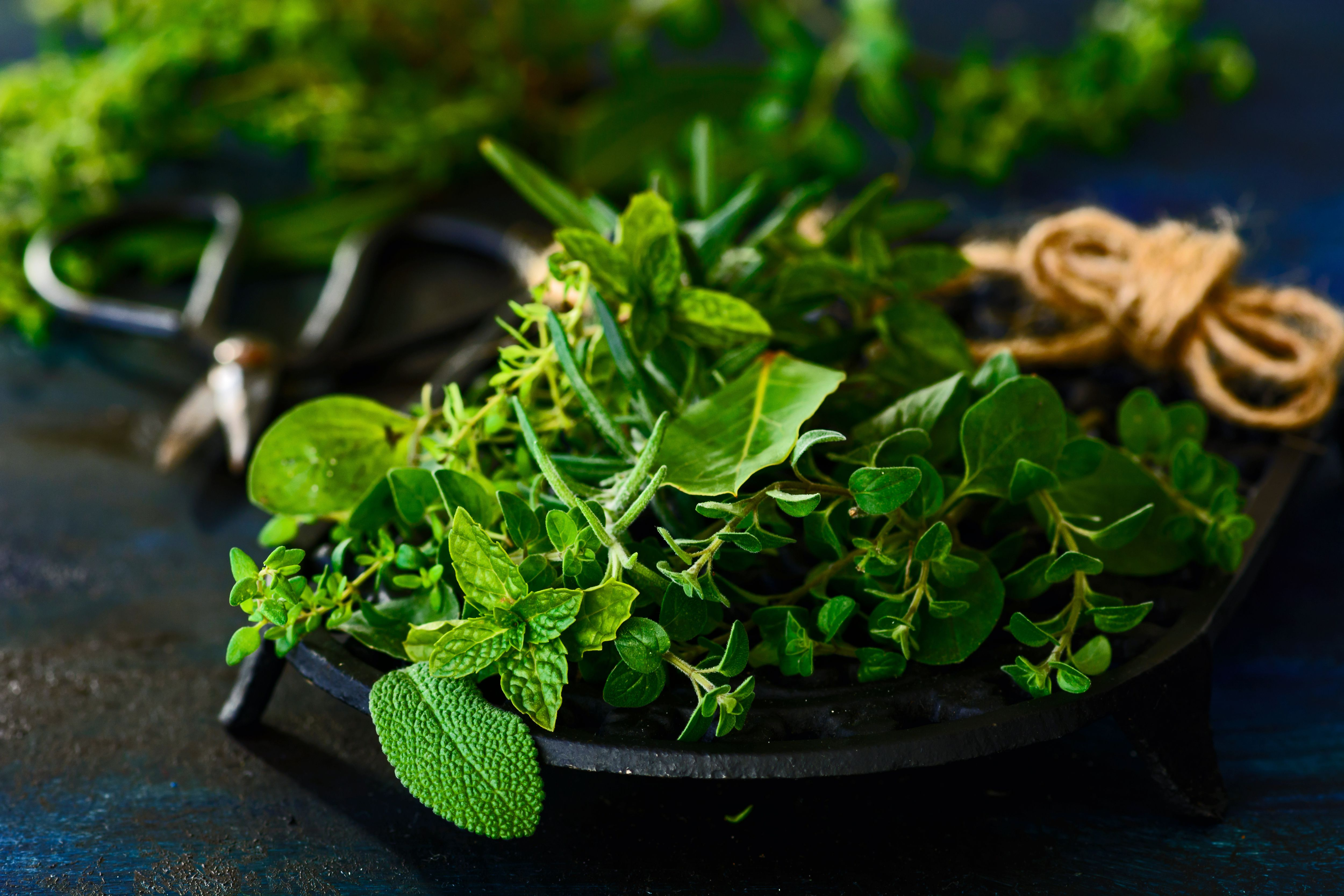 How To Substitute Fresh Herbs For Dried Herbs